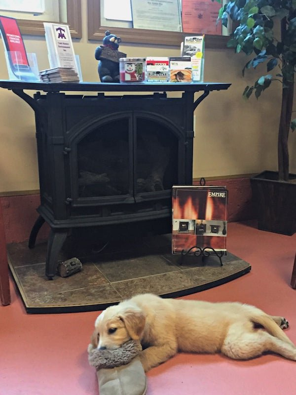 Propane Fireplace Service with Rez-Bear